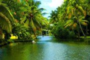 Malabar coast in southern India